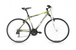 Alpina ECO C10 kerékpár 2018