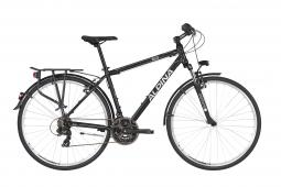 Alpina Eco T10 Grey férfi túratrekking kerékpár 2020